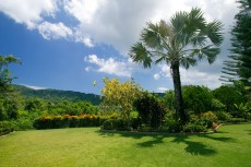 Villa 1 - Mountain View